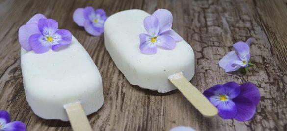 Hjemmelavet vaniljeis