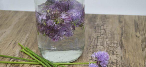 Kryddereddike med purløgsblomster